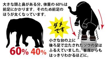 なぜゾウの足は震えていたのかー 巨体を後ろ足だけで支える負担