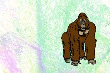 サーカスの動物を搾取から解放せよ! ディズニー映画『ゴリラのアイヴァン』
