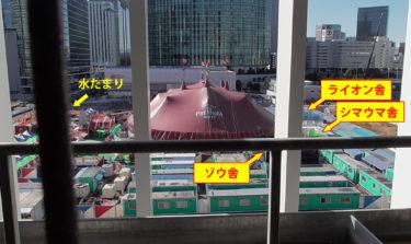木下サーカス横浜公演は、許可を得ず公共下水道を使用! 謎の水たまりは何?