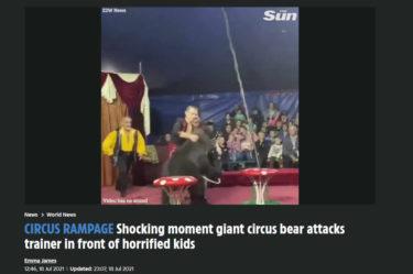 ロシアで、また調教師がサーカスのクマに攻撃される。ショーの最中に2回も